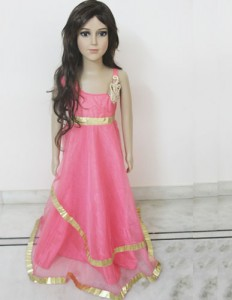 Floor Length Pink Net Dress